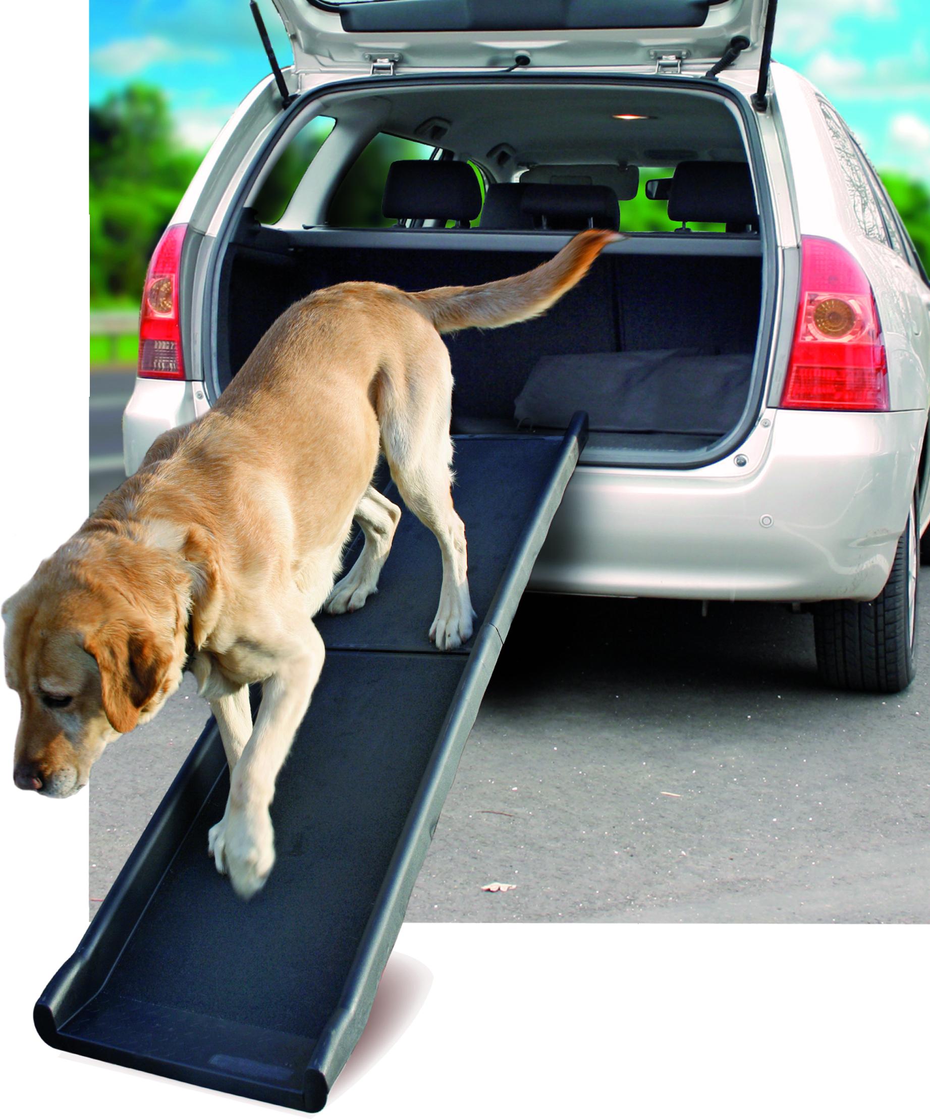 Ramp till bilen för hund