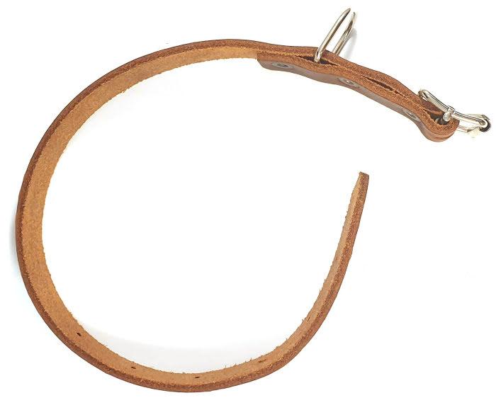 Halsband i Garvat Läder