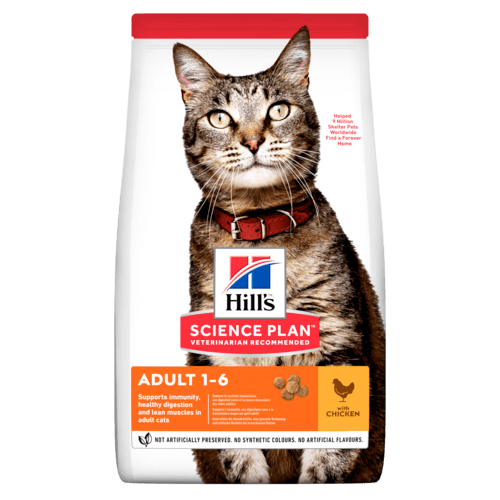 Adult torrfoder med kyckling för katt