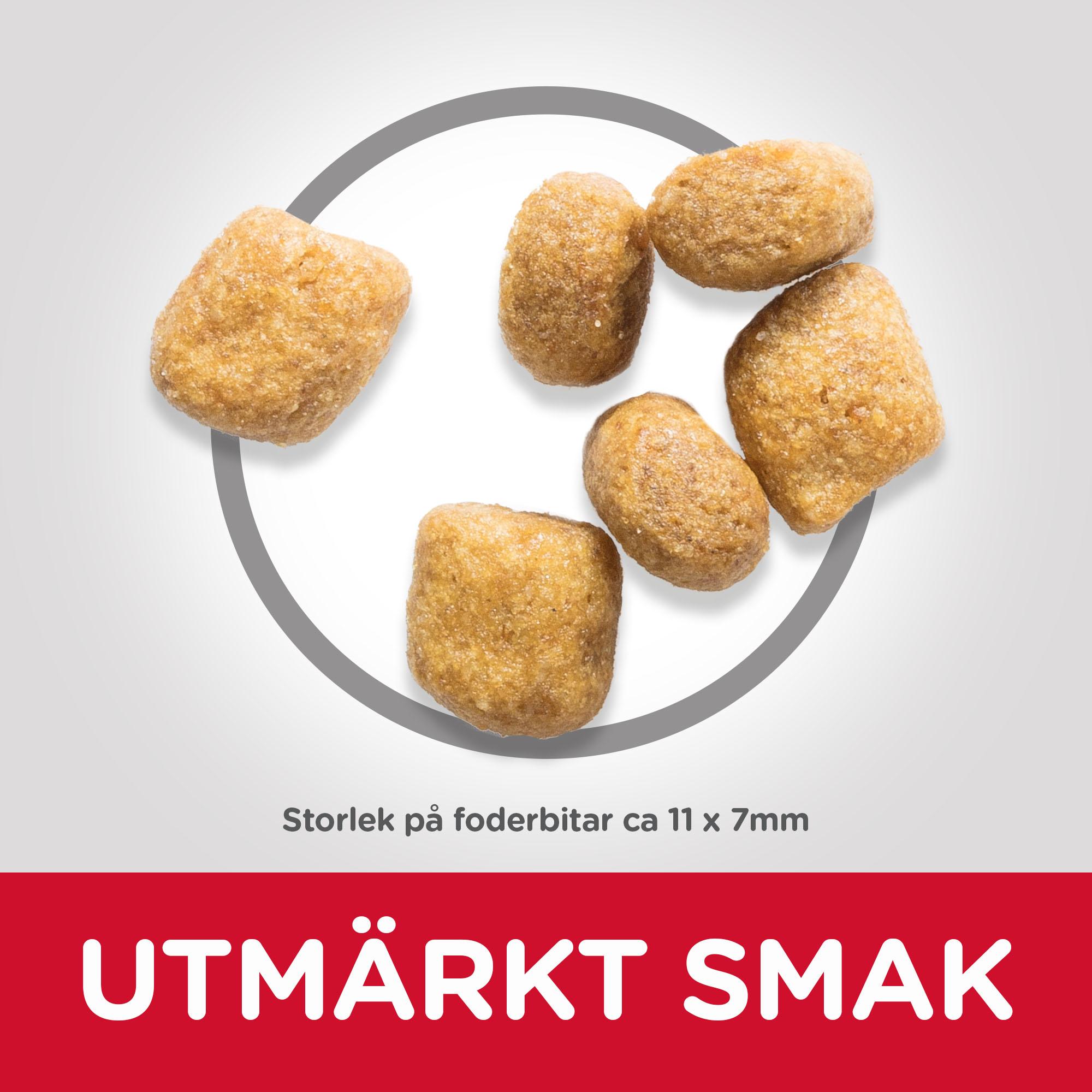 Adult Oral Care torrfoder med kyckling