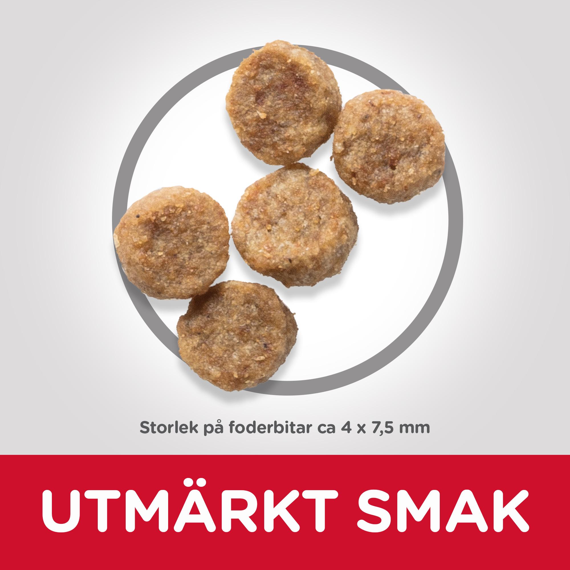Mature Adult Small & Mini torrfoder med kyckling