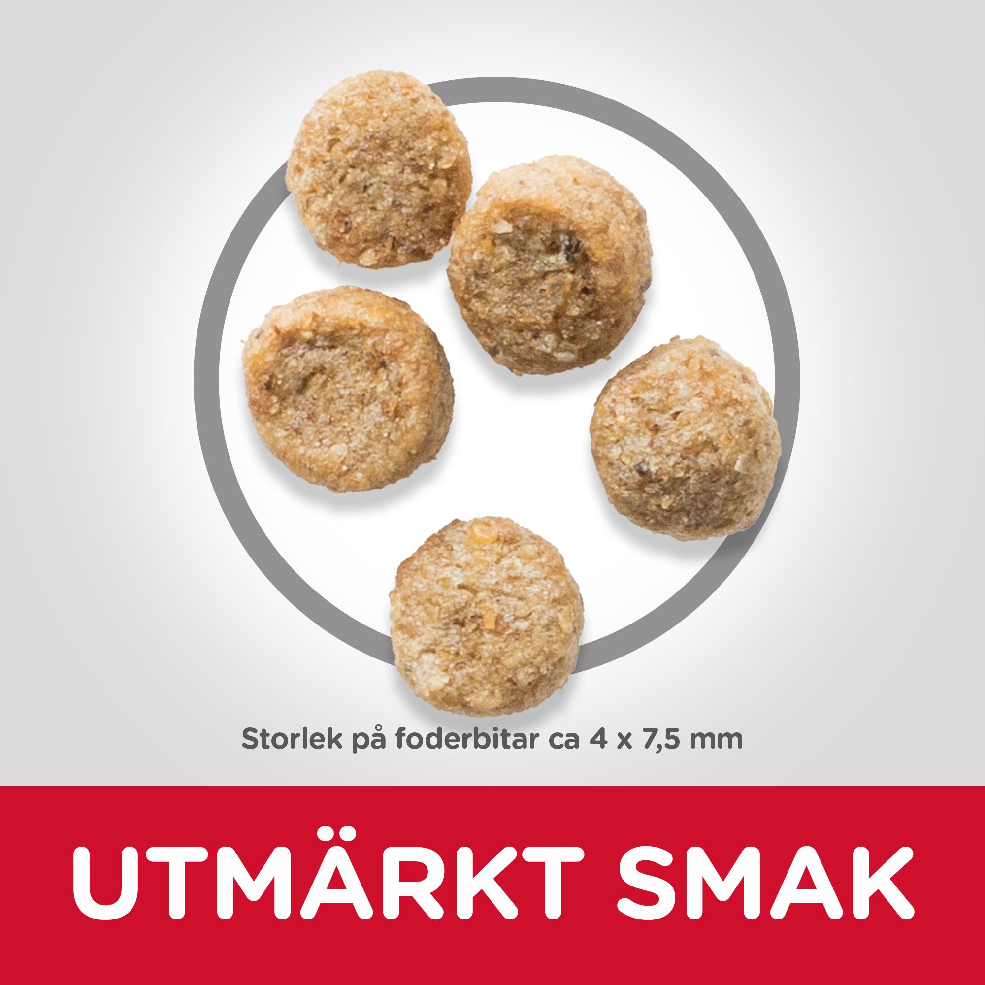 Mature Adult Light Small & Mini torrfoder med kyckling