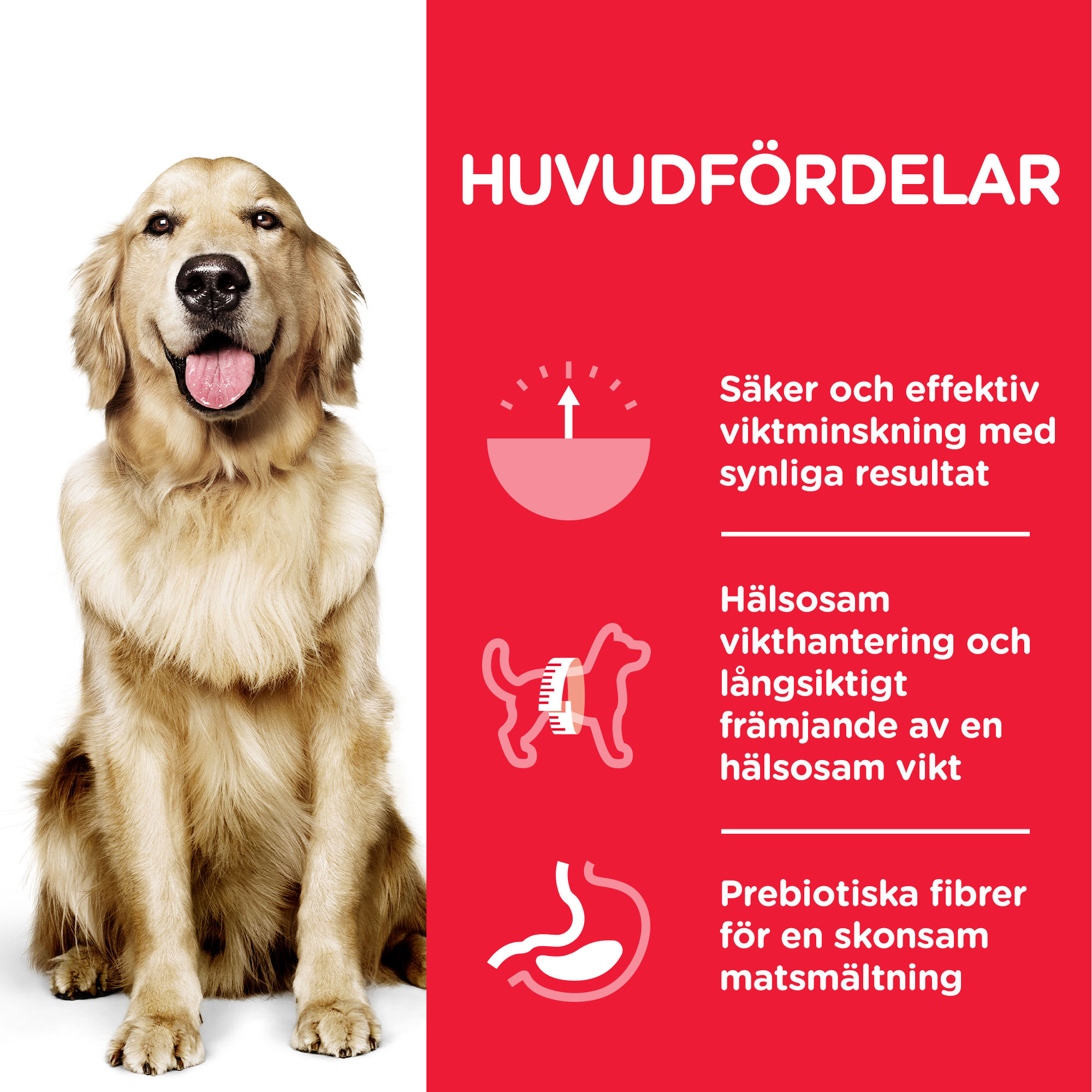 Adult Perfect Weight Large Breed torrfoder med kyckling