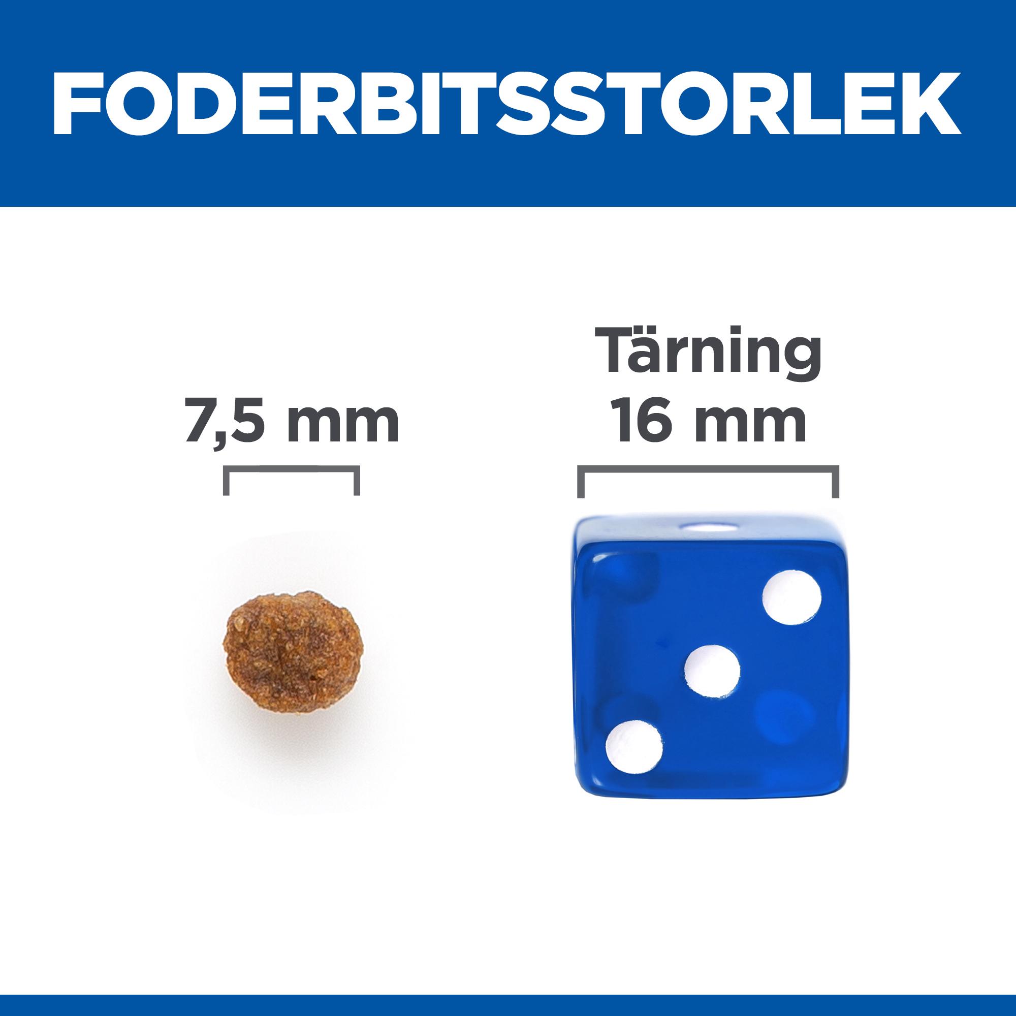 Adult Small & Mini No Grain torrfoder med tonfisk