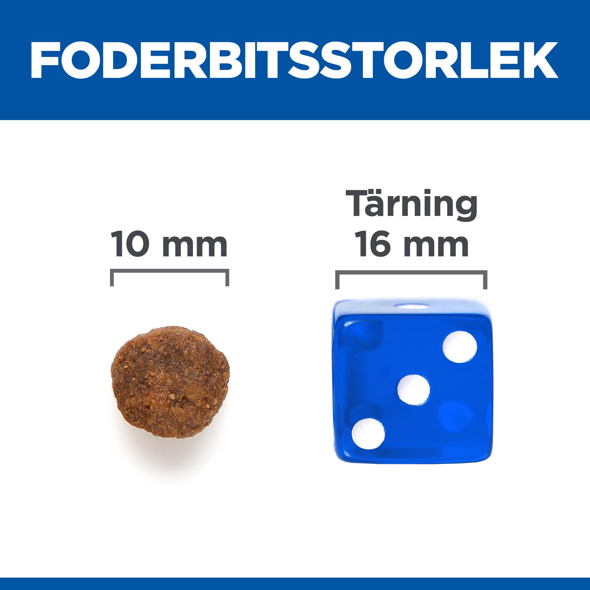 Adult Medium No Grain torrfoder med tonfisk
