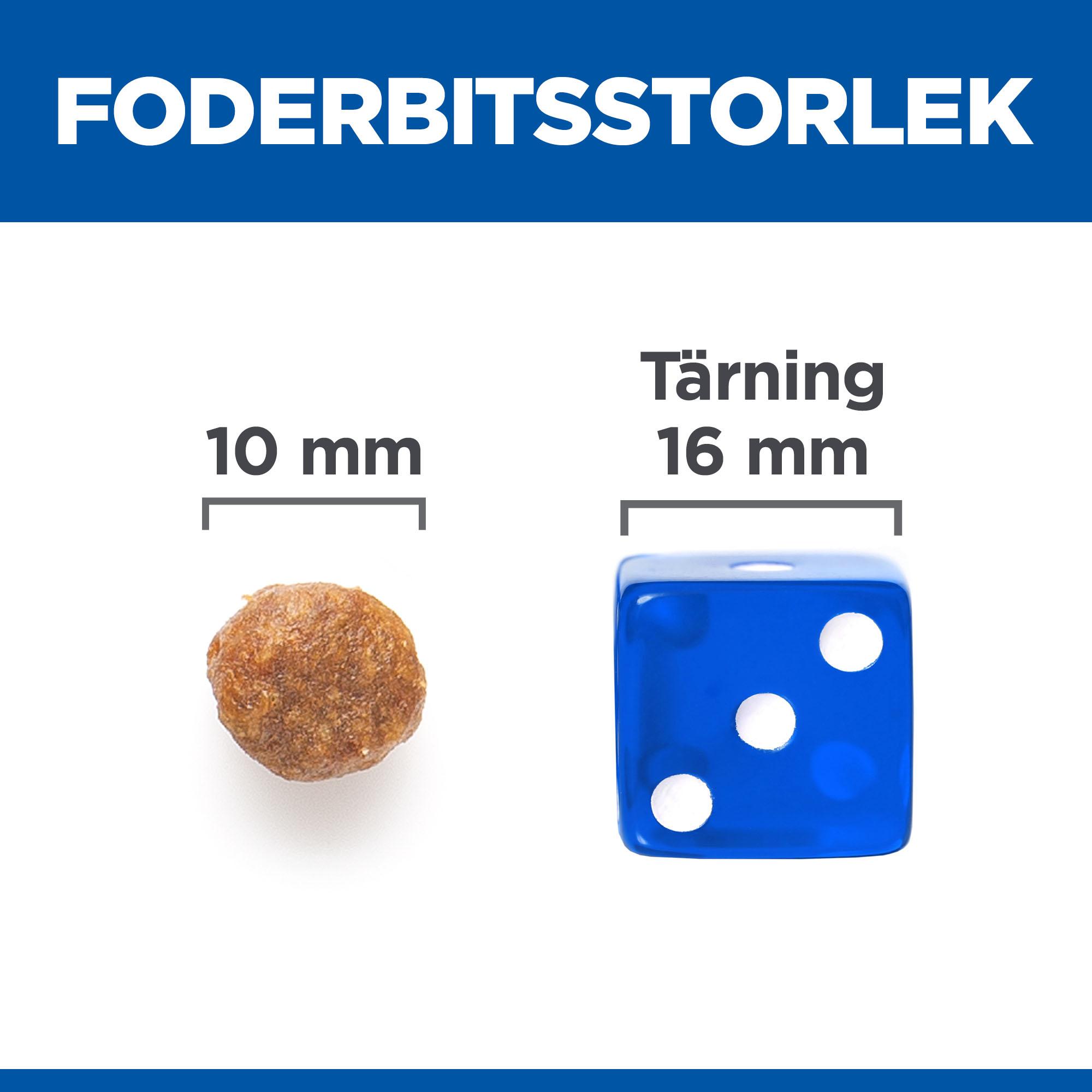 Adult Medium No Grain torrfoder med kyckling