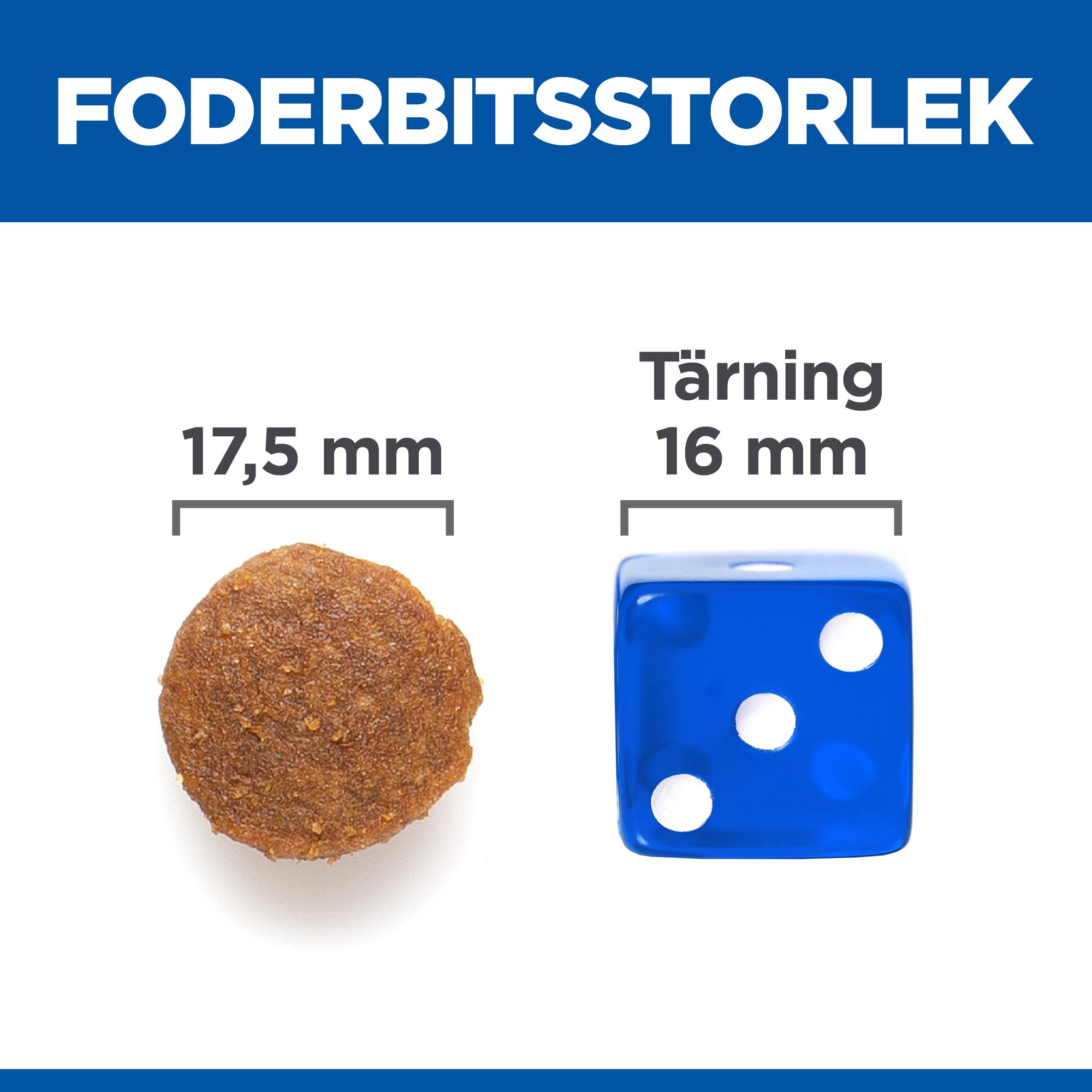 Adult Large Breed No Grain torrfoder med kyckling