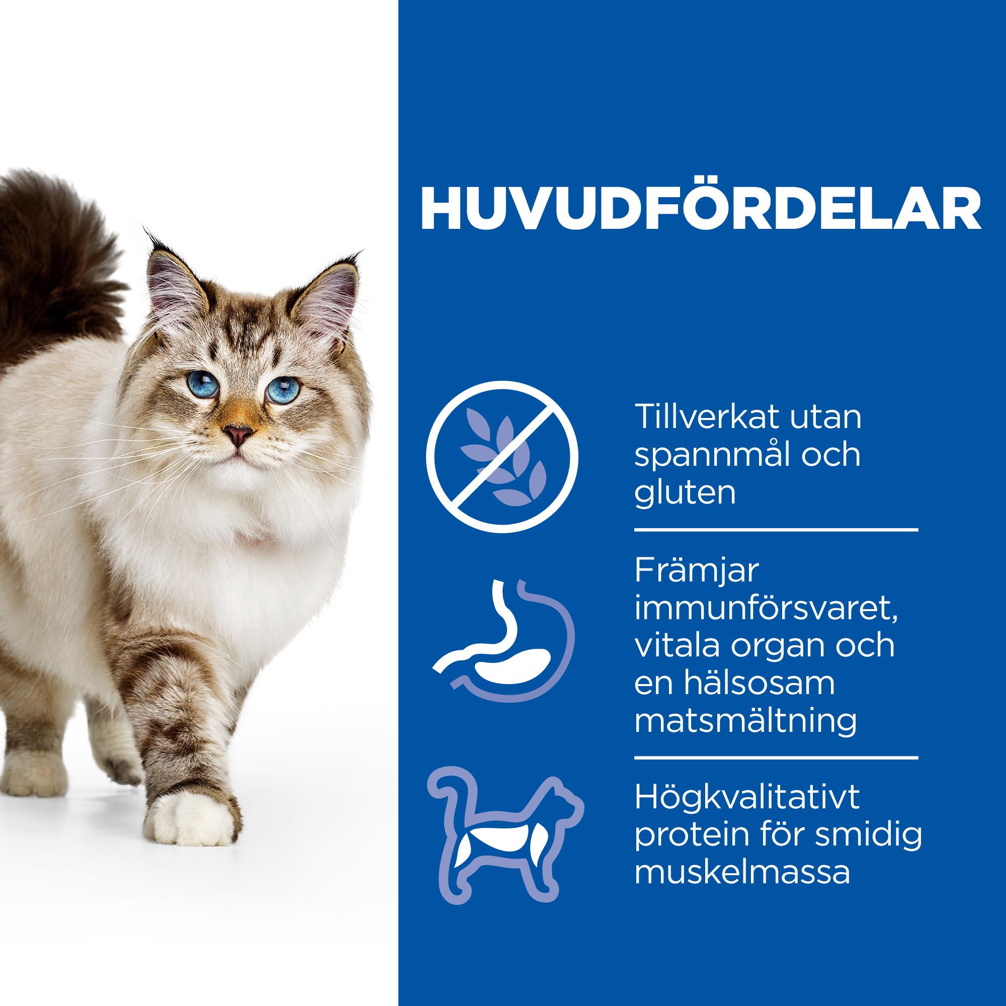 Adult Cat No Grain torrfoder med kyckling