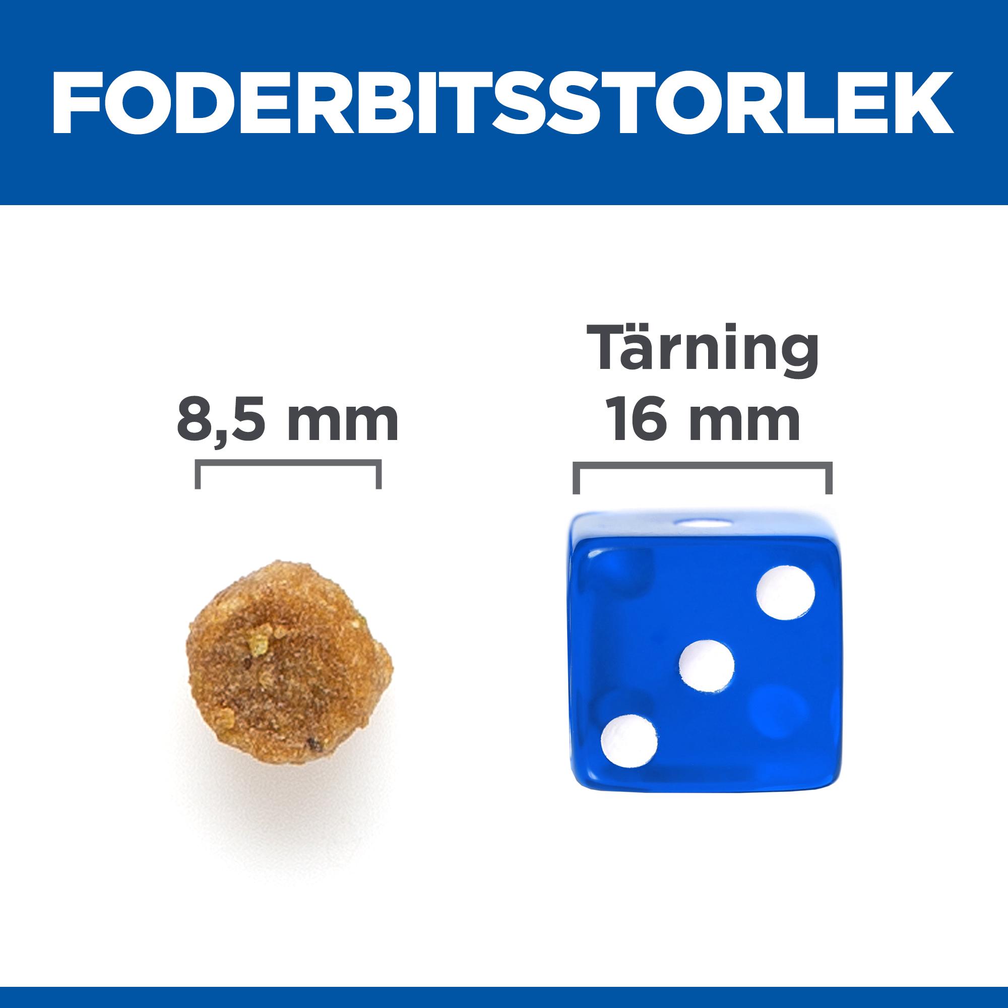 Mature Adult Cat Food No Grain torrfoder med kyckling