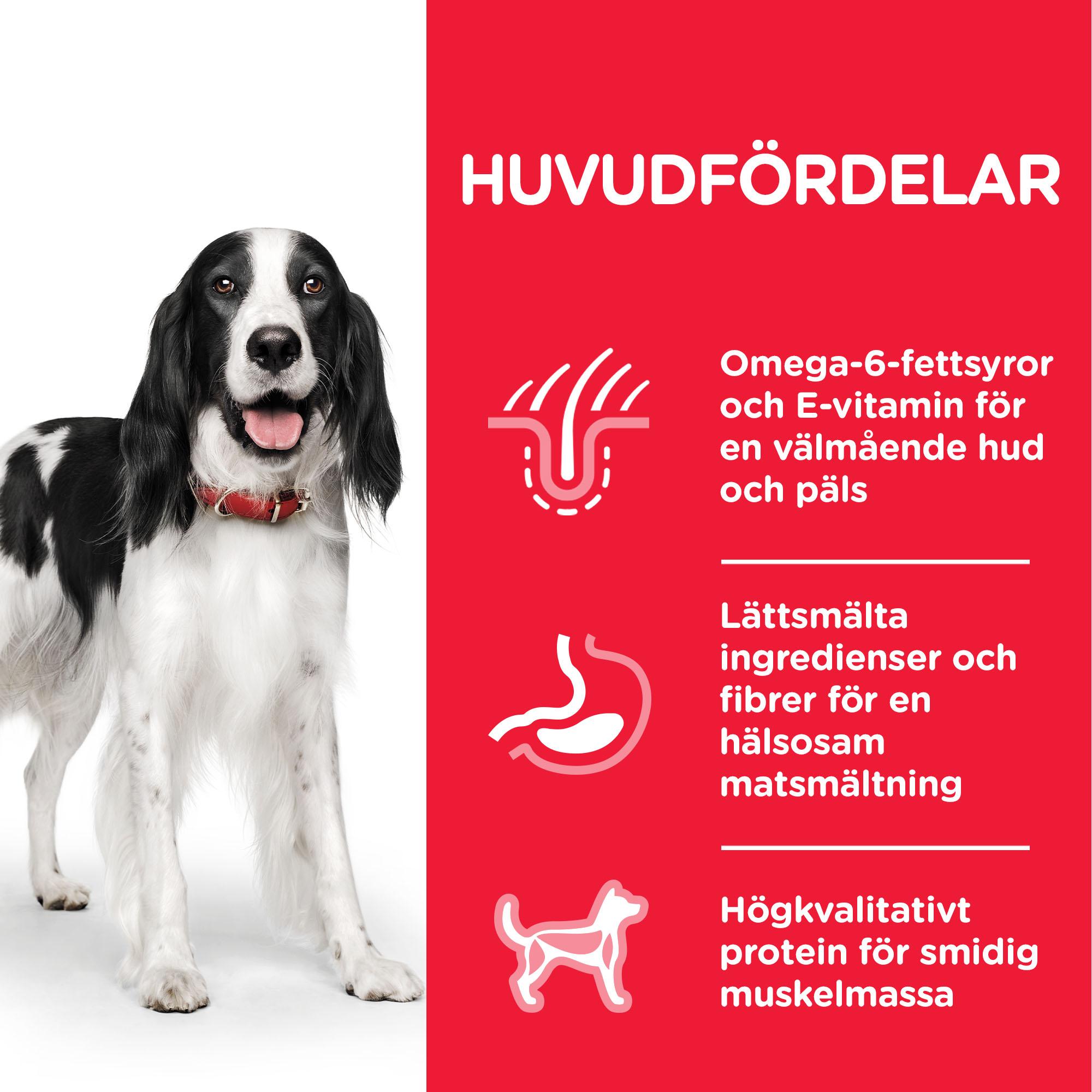 Adult våtfoder med nötkött för hund
