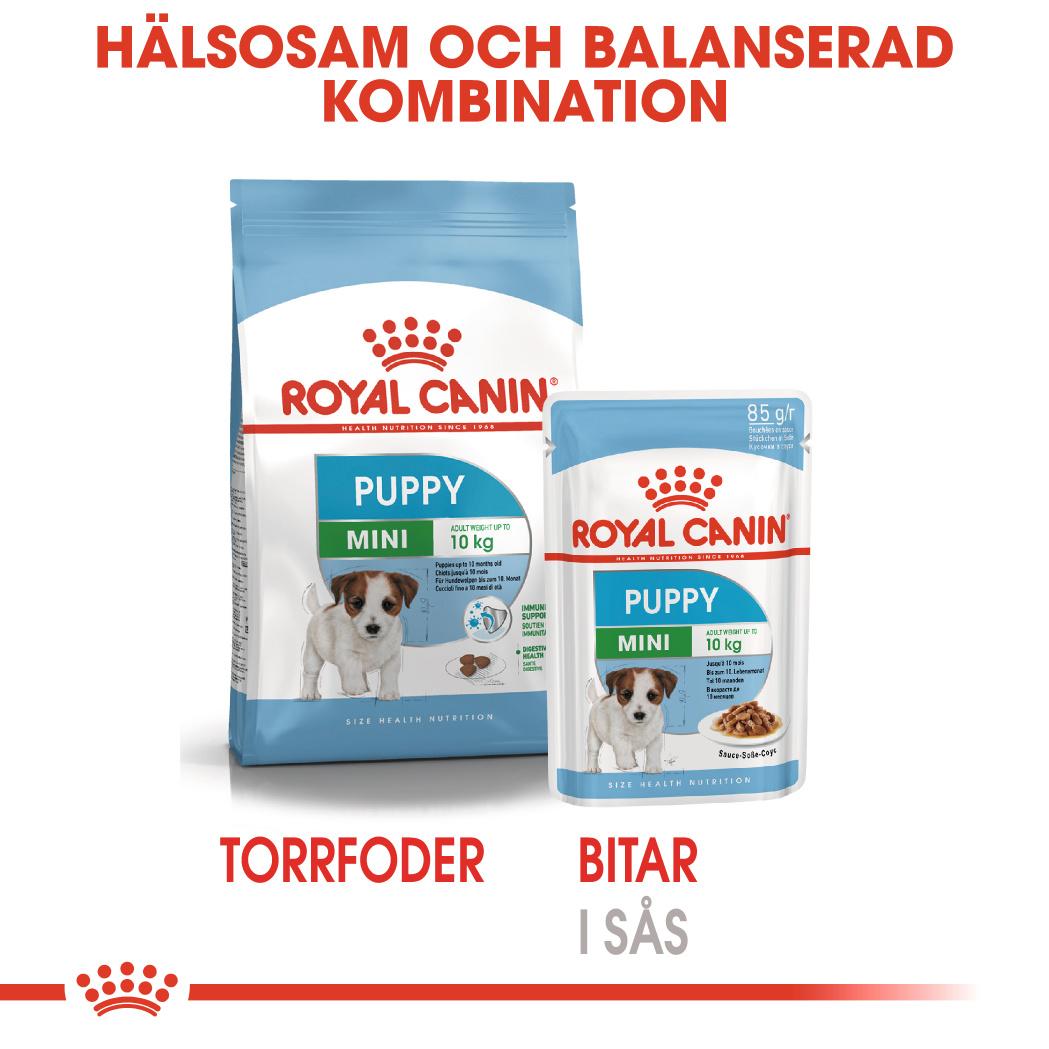Mini Puppy Våtfoder för hundvalp