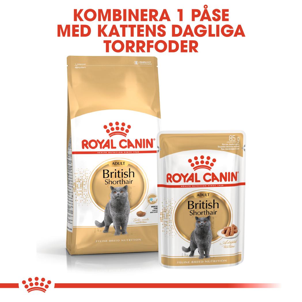 British Shorthair Adult Våtfoder för katt