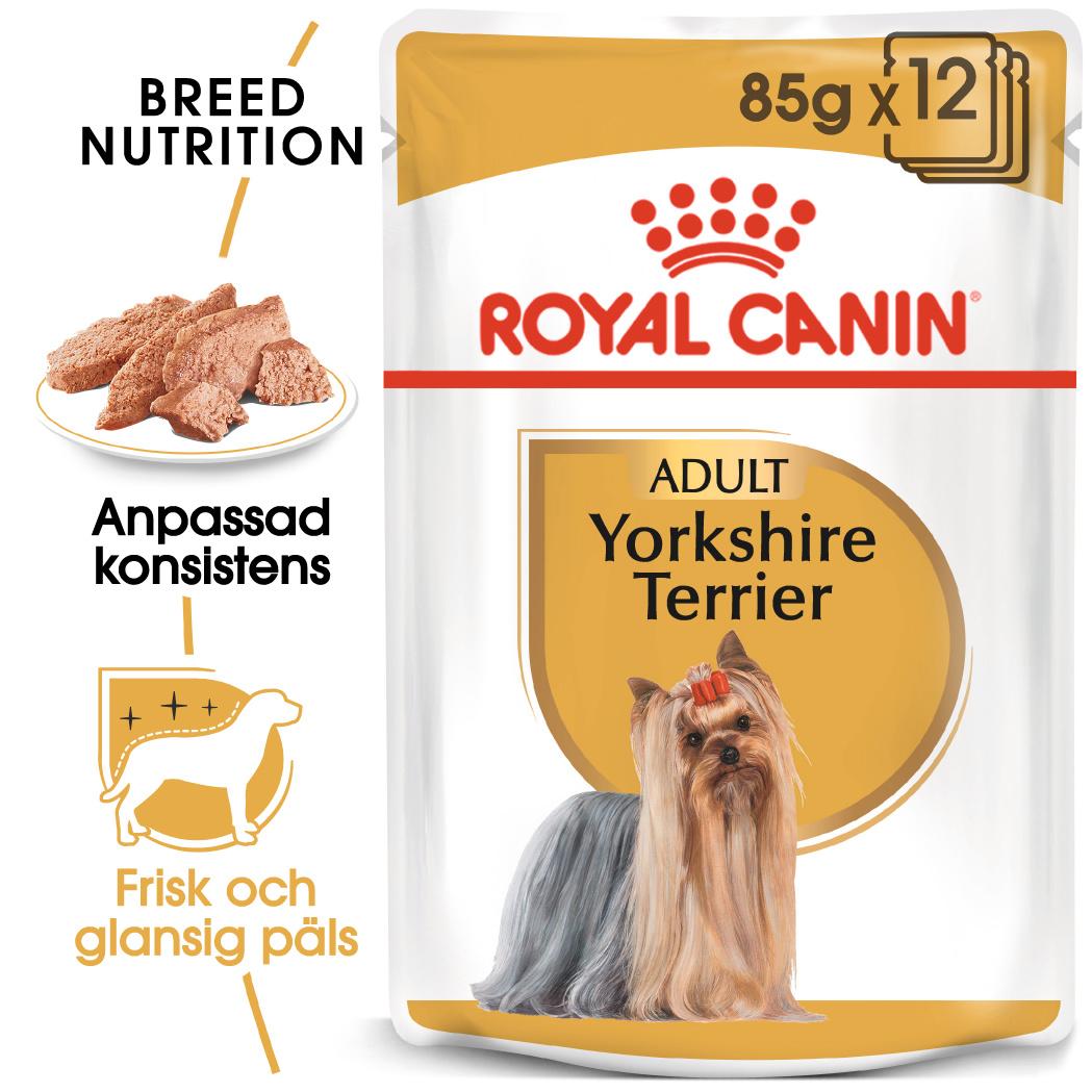 Yorkshire Terrier Adult Våtfoder för hund