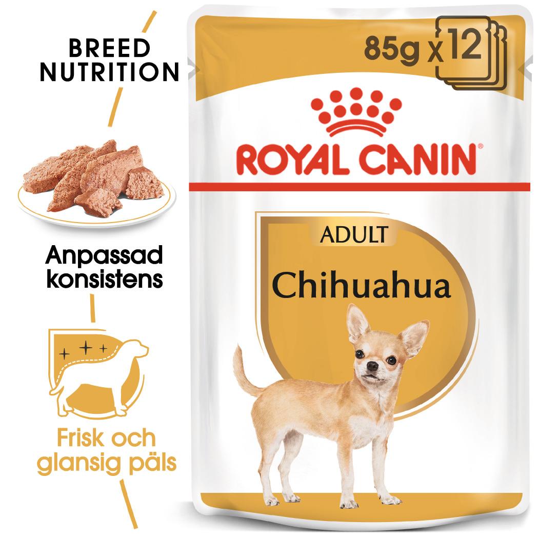 Chihuahua Adult Våtfoder för hund