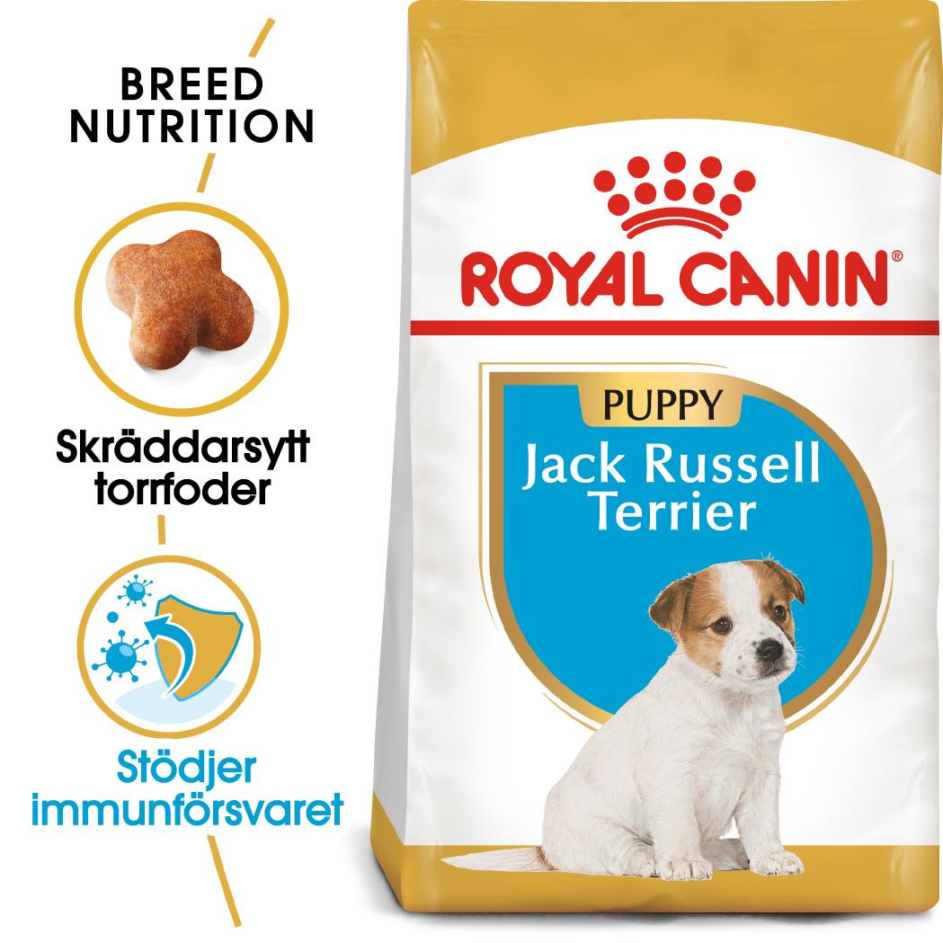 Jack Russel Puppy Torrfoder för hundvalp