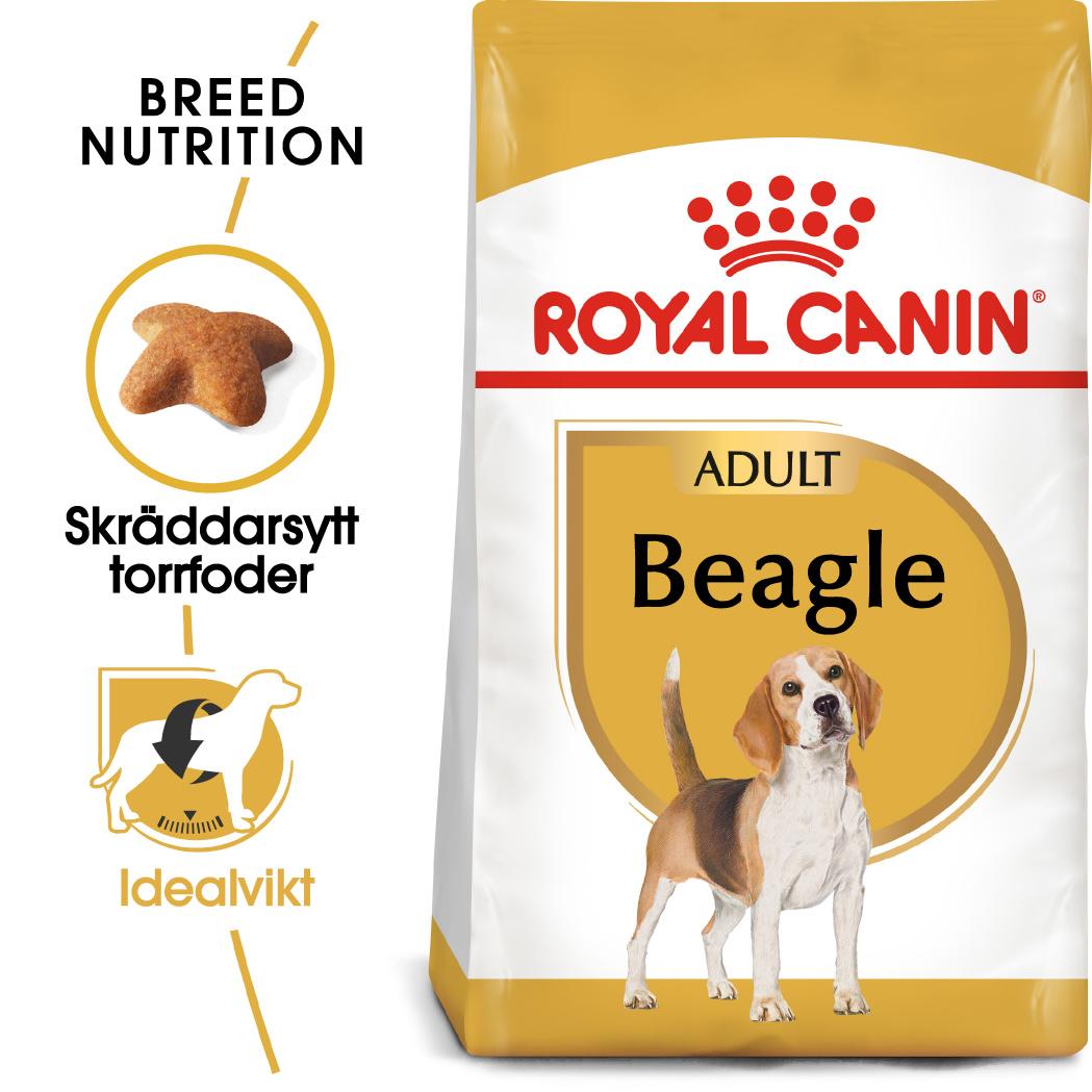 Beagle Adult Torrfoder för hund
