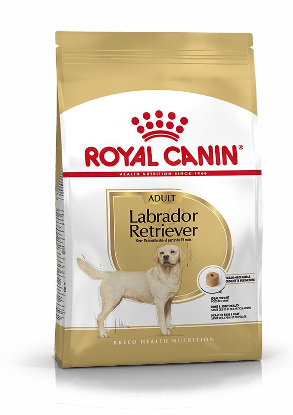 Labrador Retriever Adult Torrfoder för hund