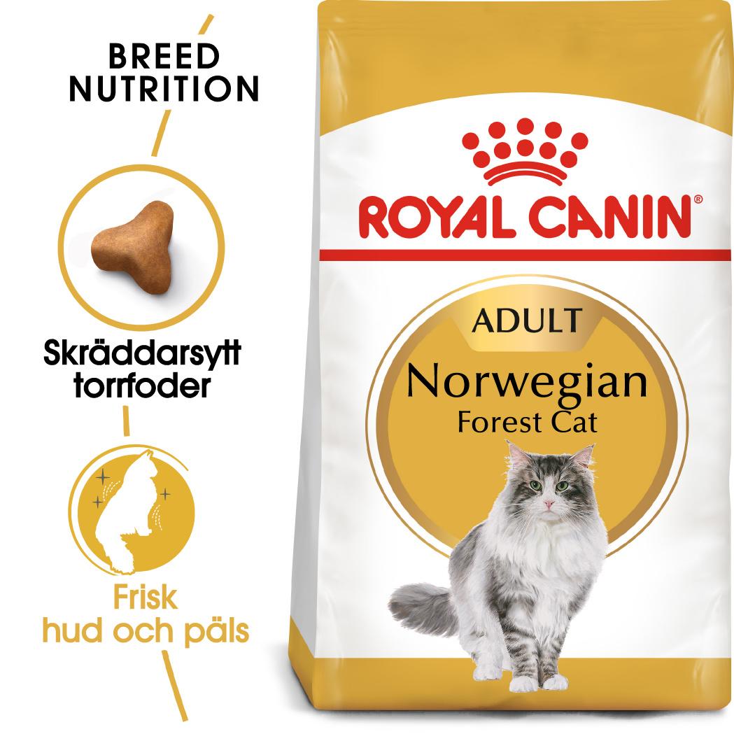 Norwegian Forest Adult Torrfoder för katt