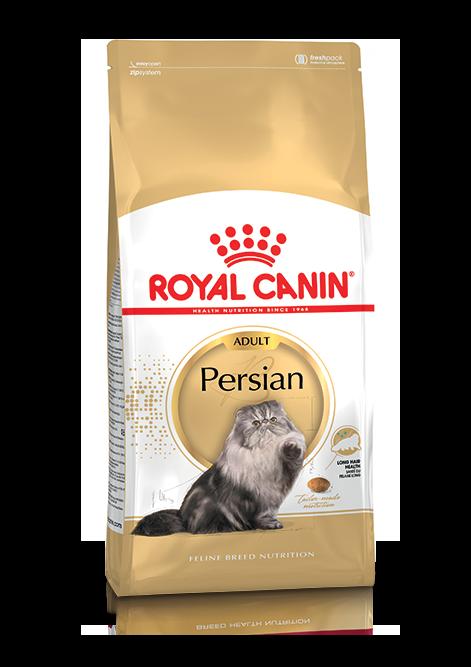 Persian Adult Torrfoder för katt