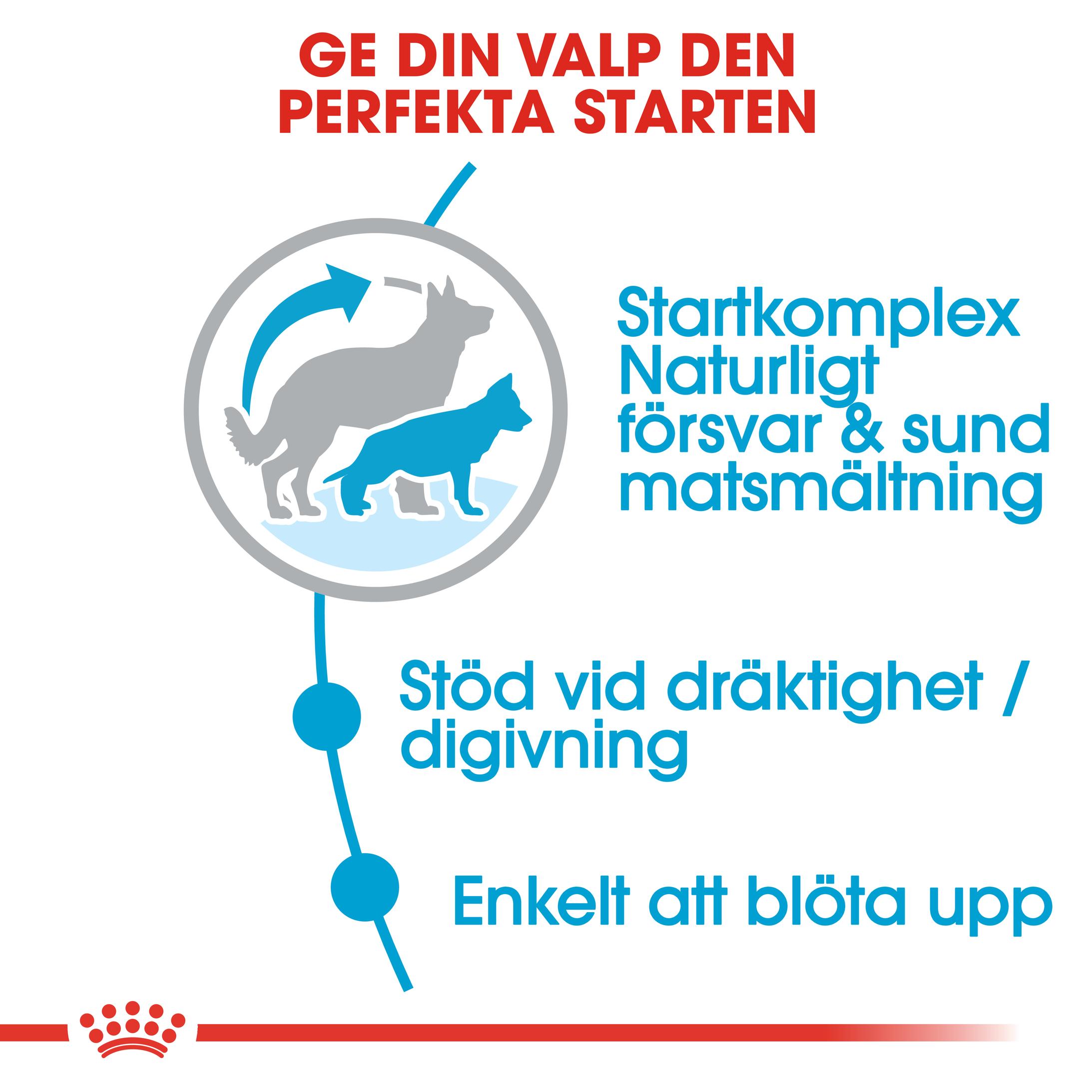 Maxi Starter Torrfoder för hund