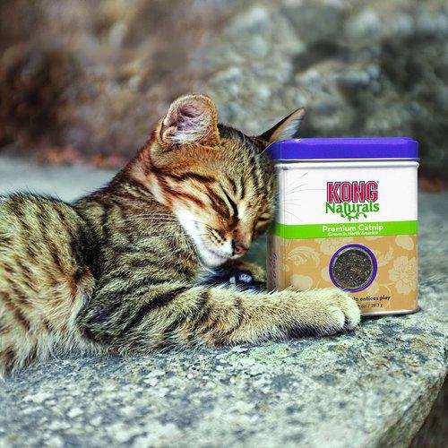 Natural Catnip - 56 g