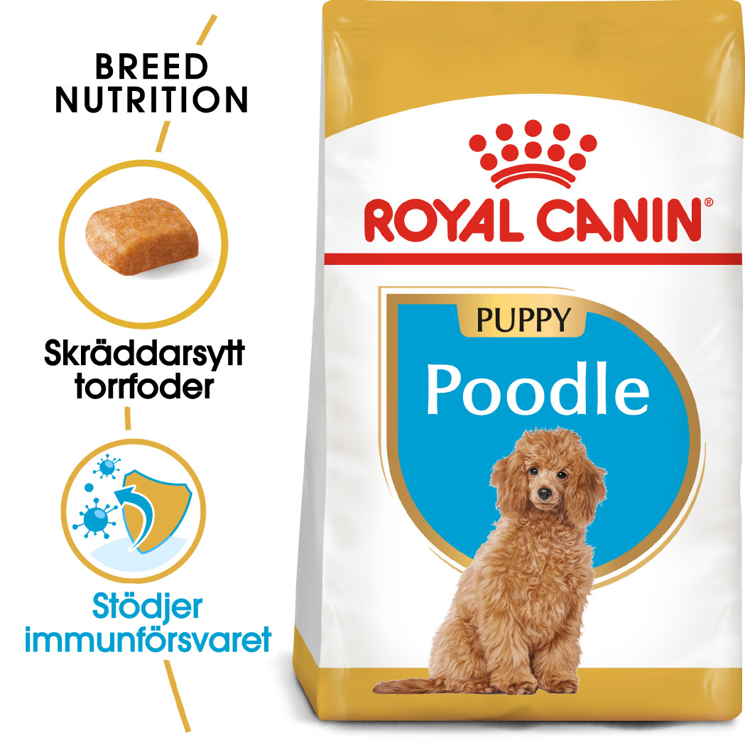 Poodle Junior Torrfoder för hundvalp