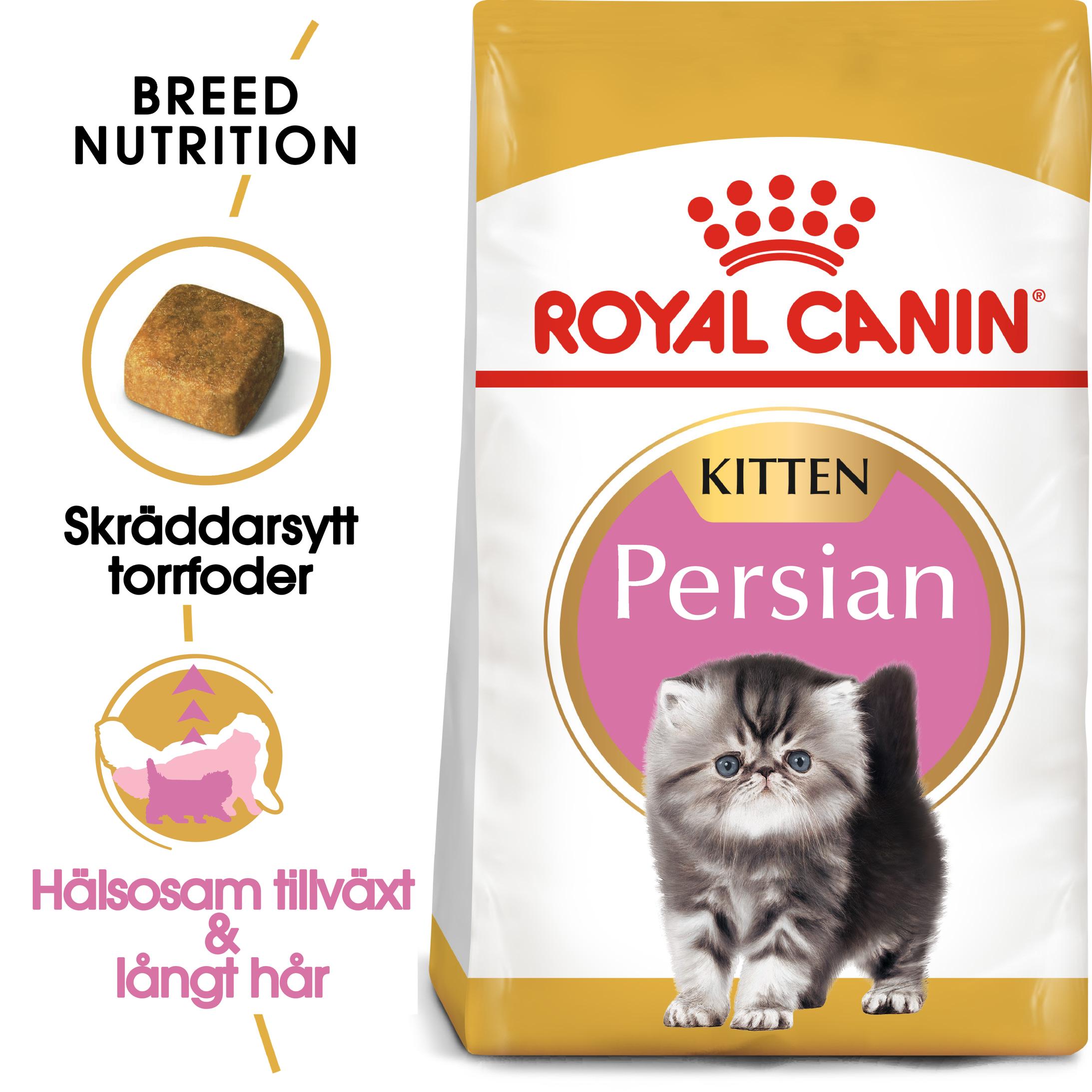 Persian Kitten Torrfoder