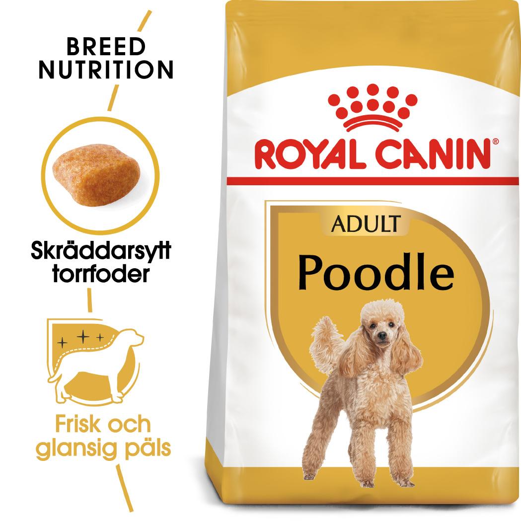 Poodle Adult Torrfoder för hund