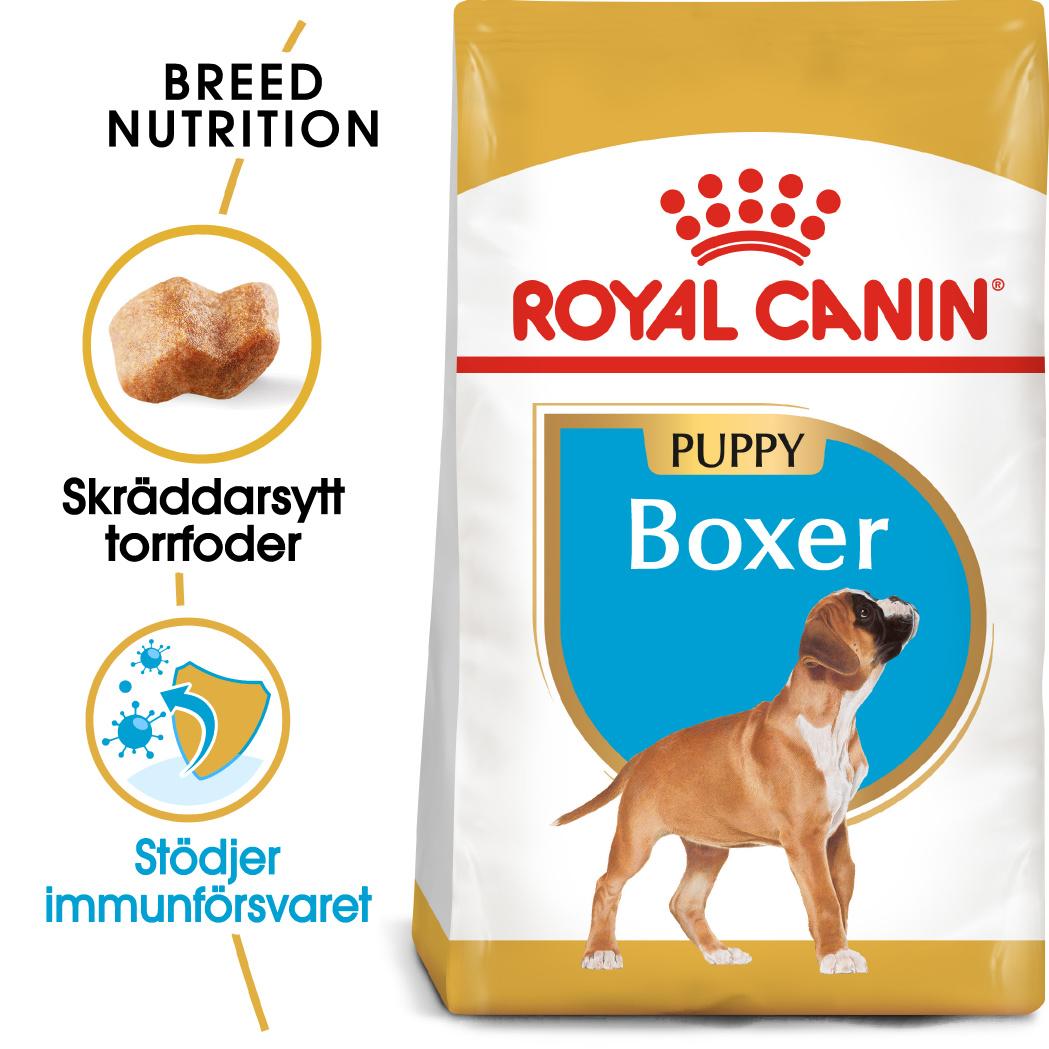 Boxer Junior Torrfoder för hundvalp