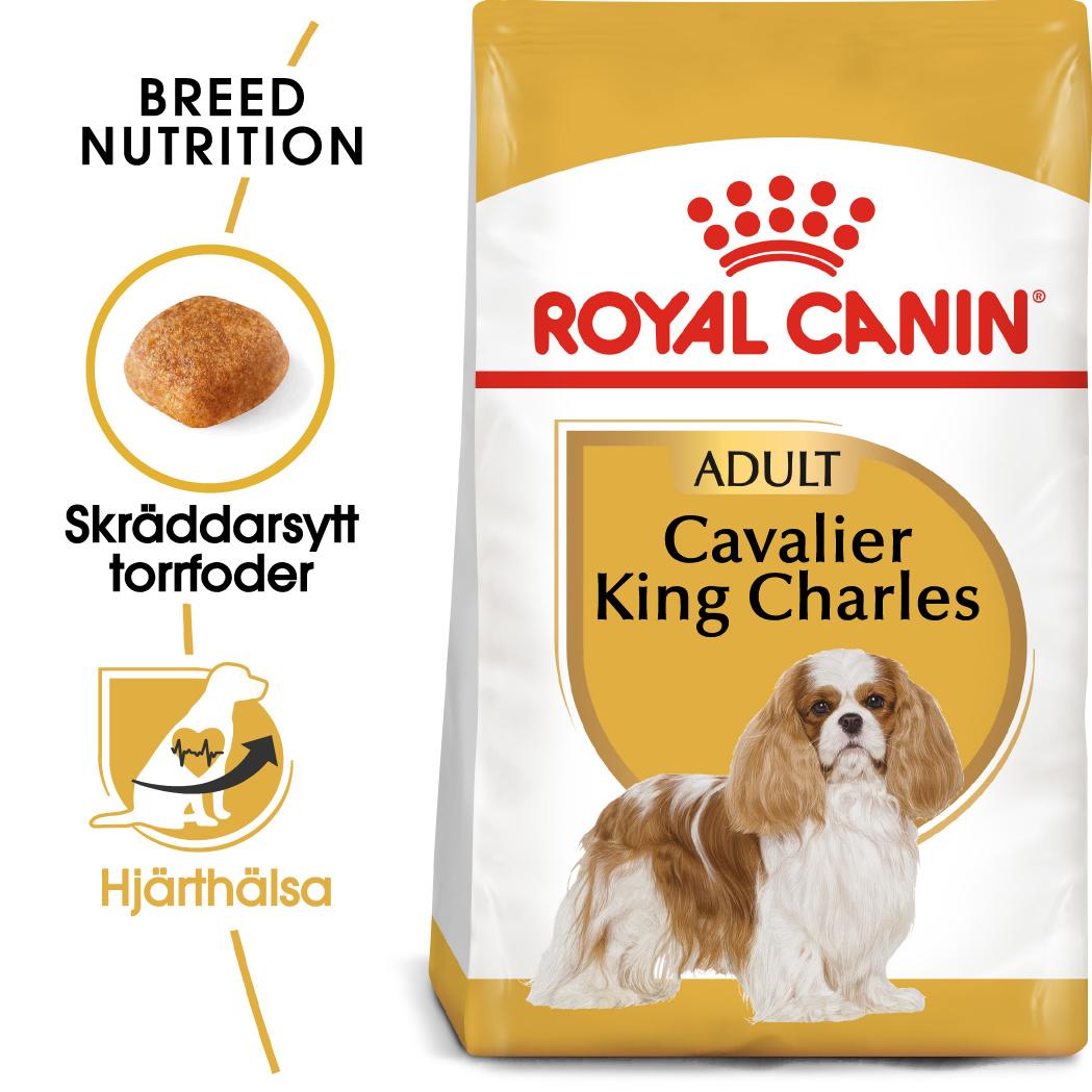 Cavalier King Charles Adult Torrfoder för hund