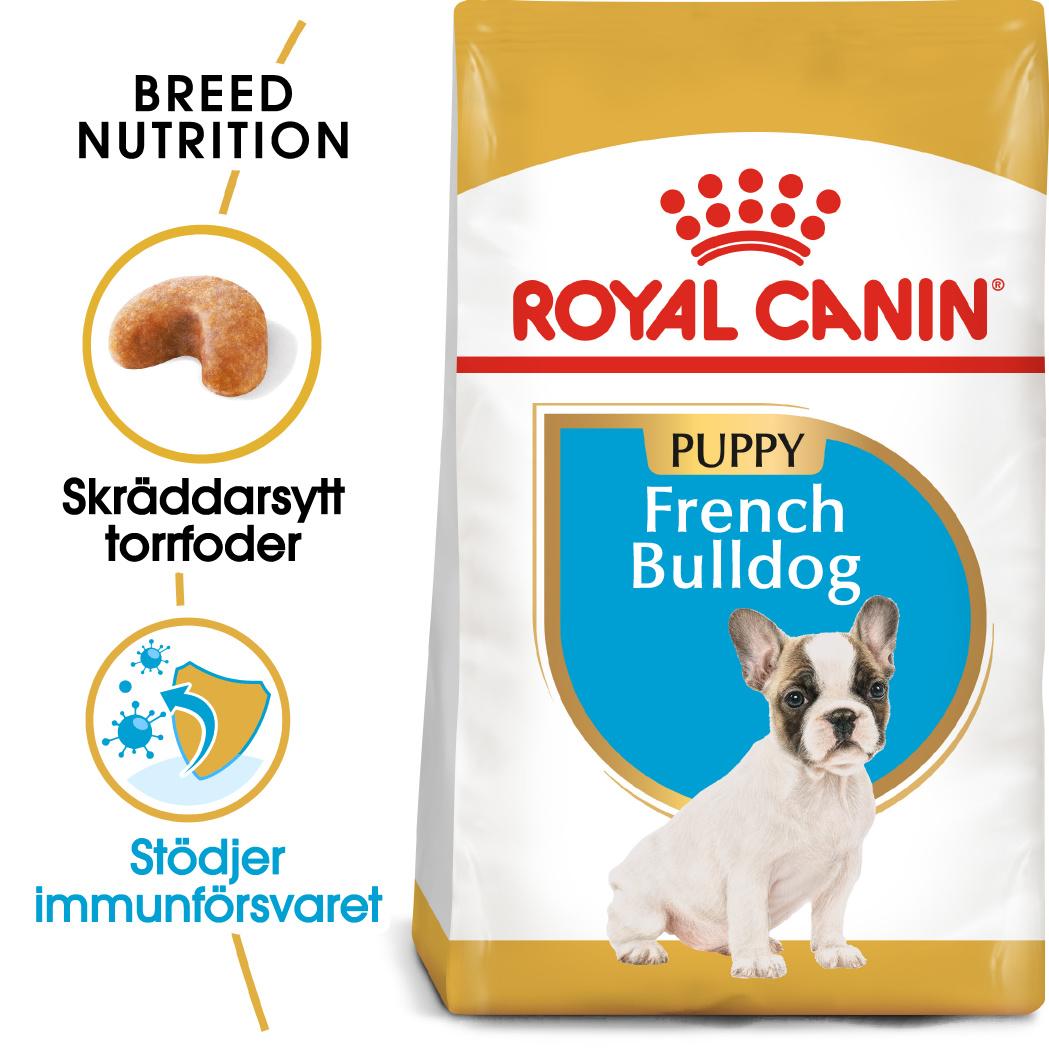 French Bulldog Puppy Torrfoder