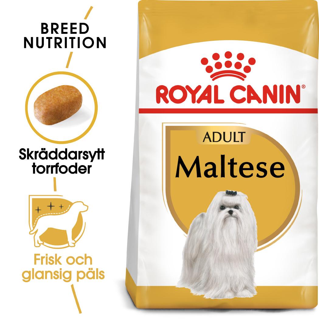 Maltese Adult Torrfoder för hund