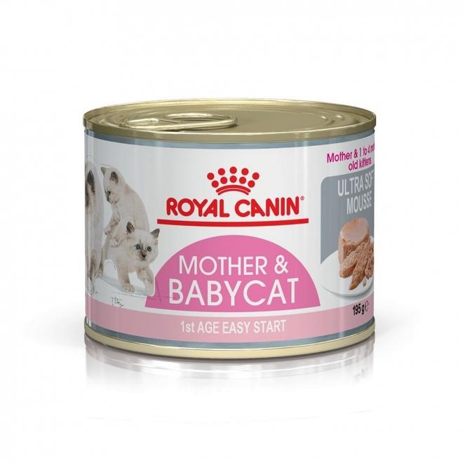 Mother Babycat Starter Våtfoder för Katt