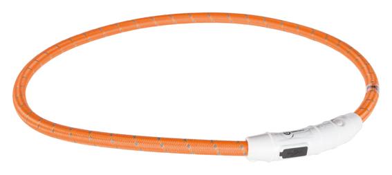 Lysande hundhalsband - Orange Large
