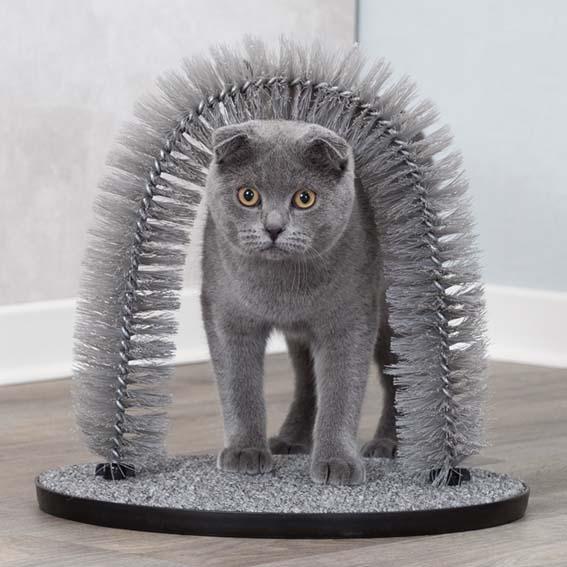 Massage och pälsbåge för katt