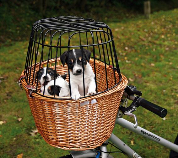 Cykelkorg front med galler - Brun