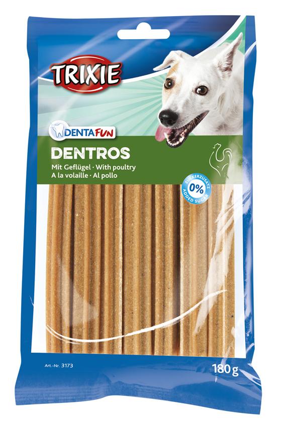 Dentros tuggben för hund