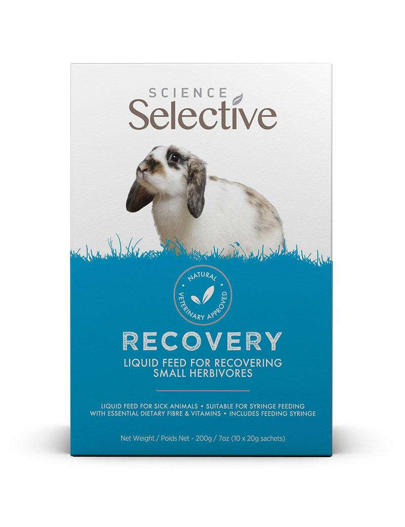 Recovery Sachet fodertillskott