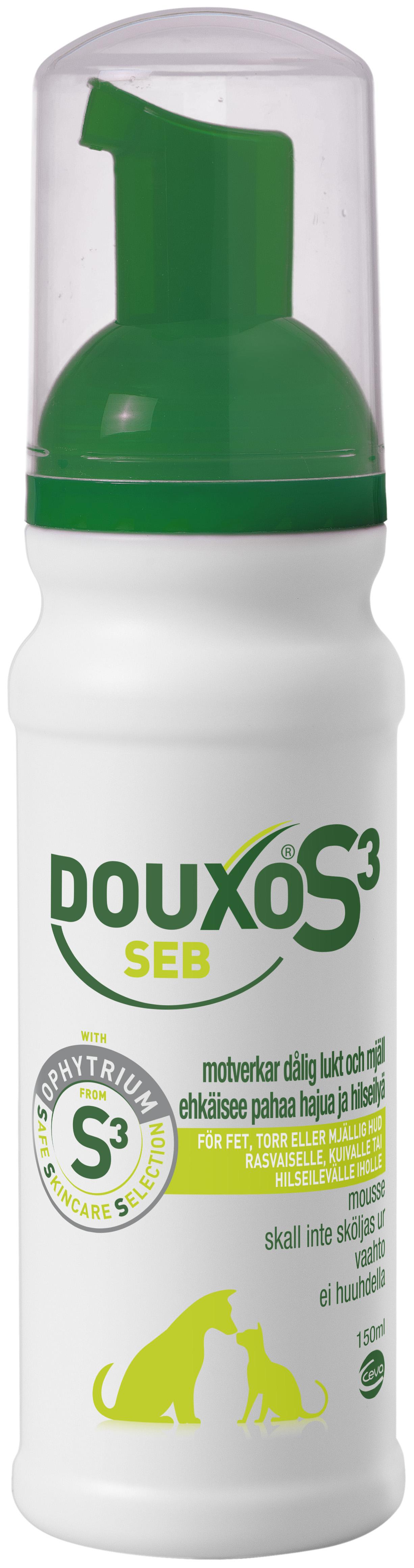 Seb Mousse