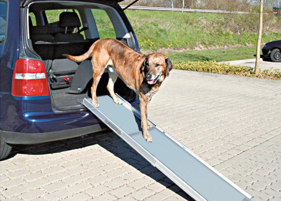 Teleskopisk Ramp för hund