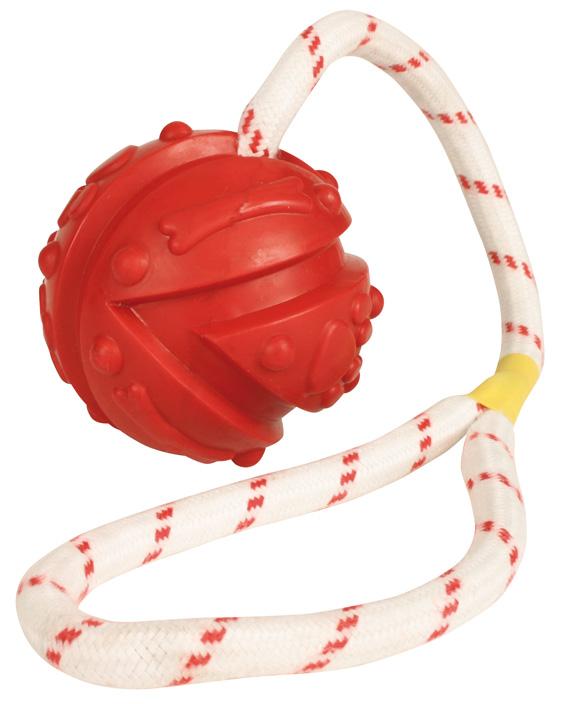 Boll på rep leksak för hund