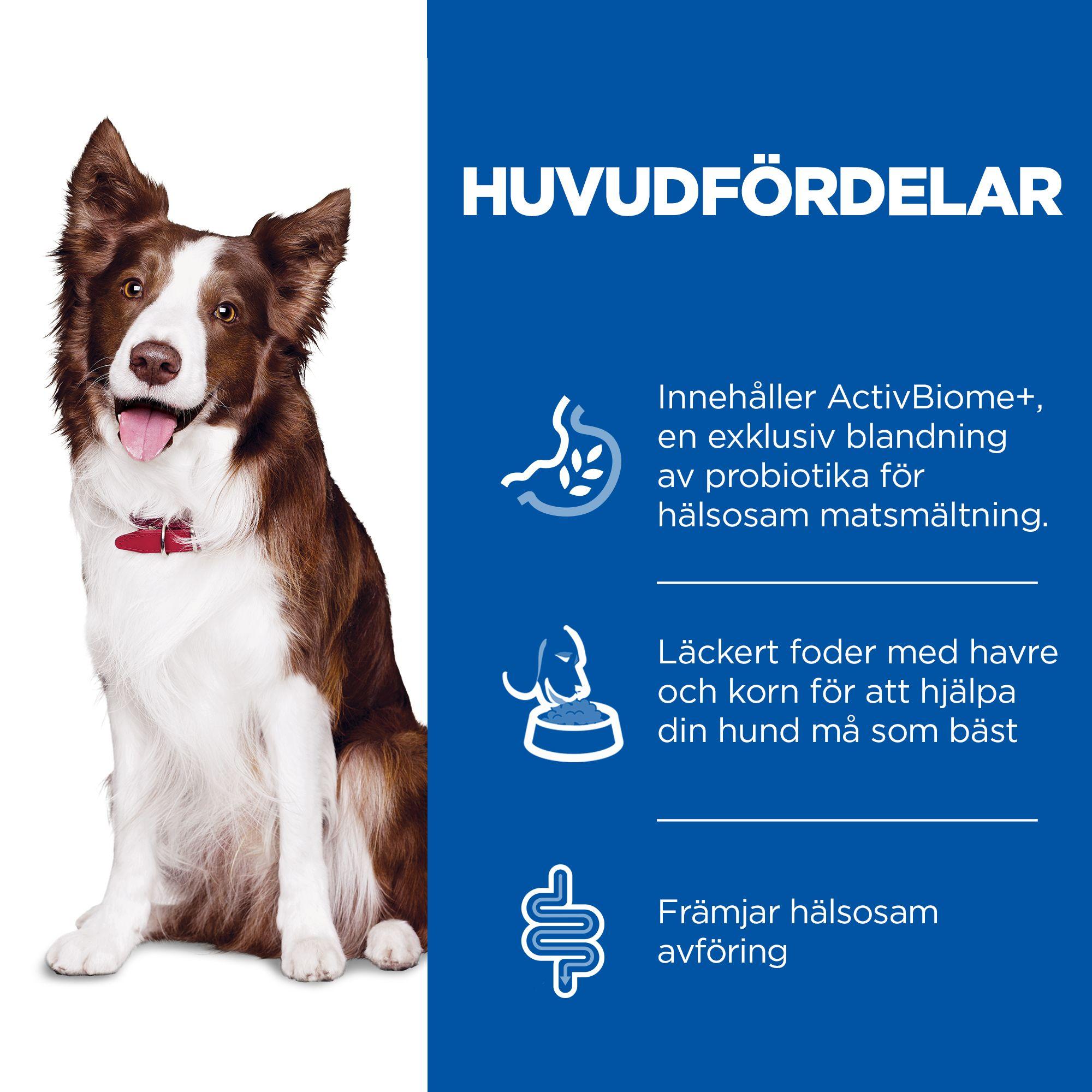 Perfect Digestion Medium Adult Hundfoder