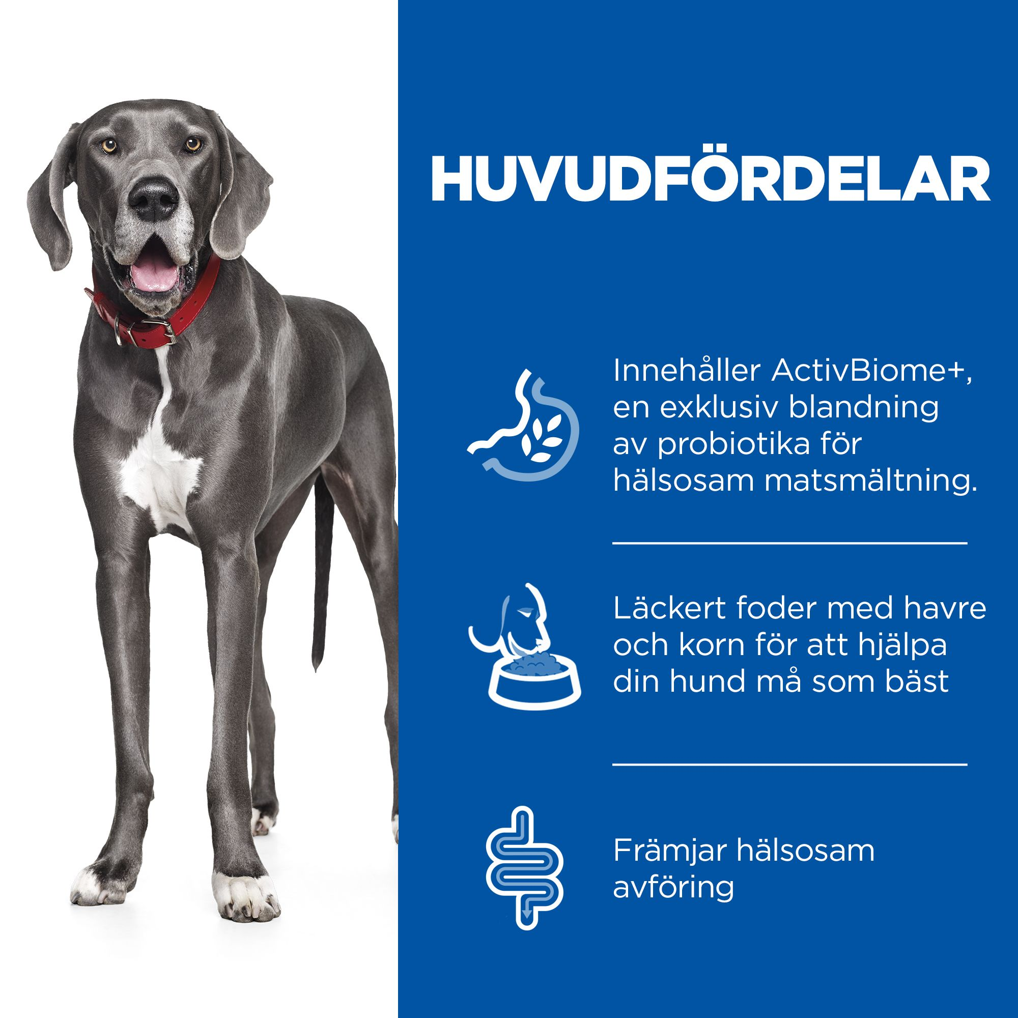 Perfect Digestion Large Breed Adult Hundfoder