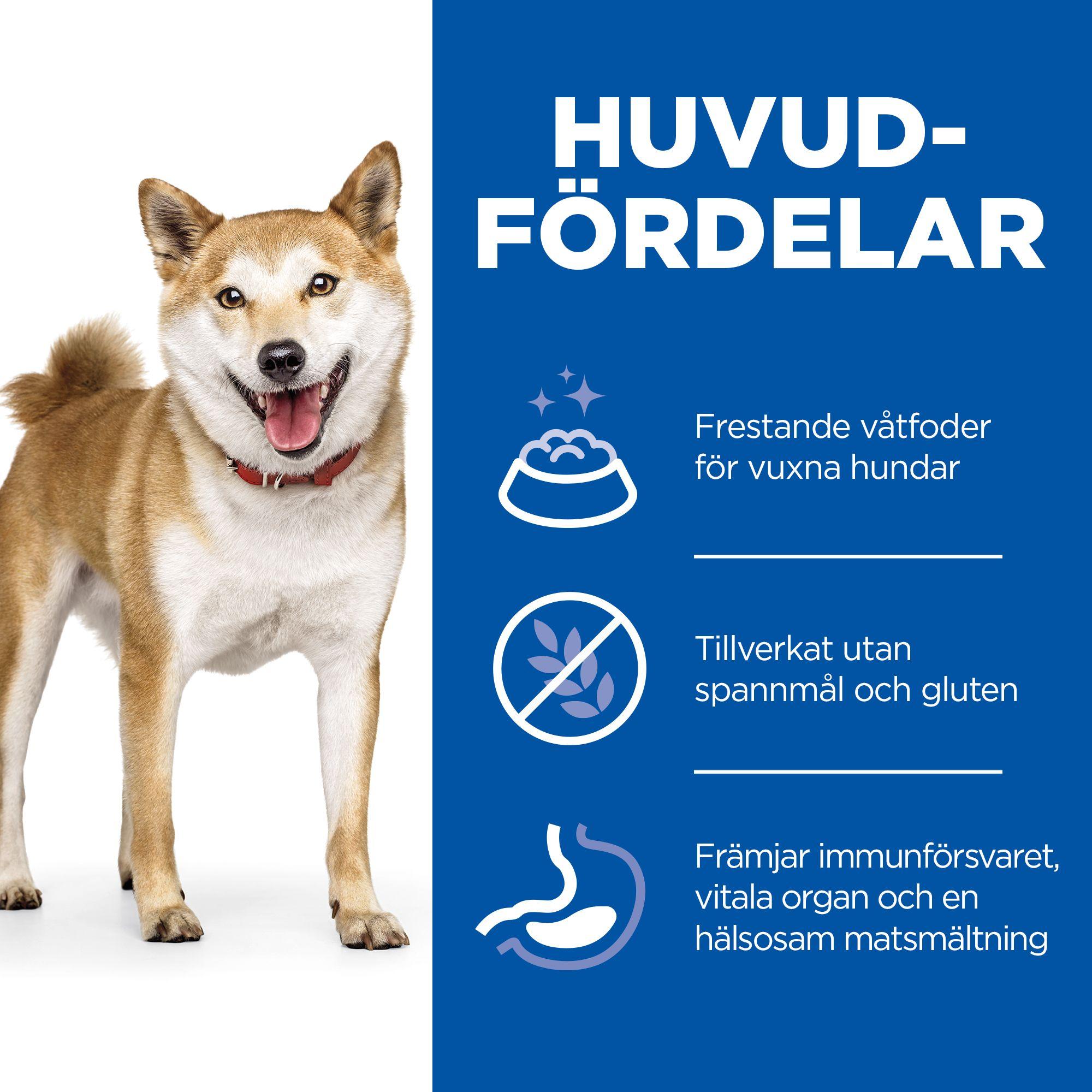 Adult No Grain Hundfoder med Lax