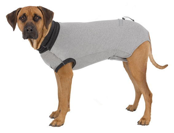 Skyddande Body för Hund