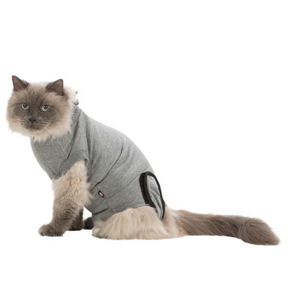 Skyddande Body för Katt