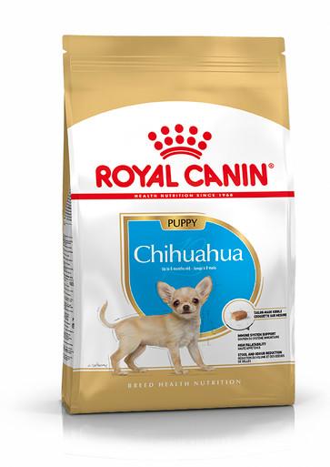 Chihuahua Junior Puppy Torrfoder för hundvalp
