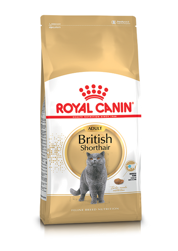 British Shorthair Adult Torrfoder för katt