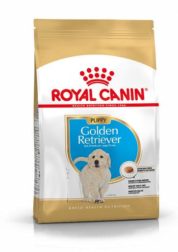 Golden Retriever Puppy Torrfoder för hundvalp