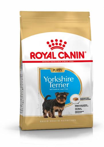 Yorkshire Terrier Puppy Torrfoder för hundvalp